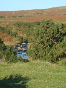 Dartmoor river